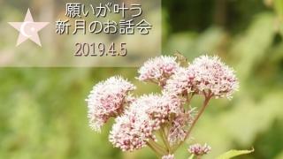 新月のお話会20190405画像