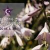 Facebookイベント190830画像