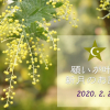 facebookイベント200224