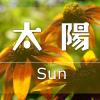 太陽アイキャッチ